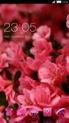 Pink Flowers CLauncher Samsung Galaxy A60 Theme