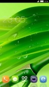 Green CLauncher Realme 2 Theme