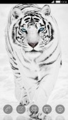 White Tiger CLauncher RED Hydrogen One Theme