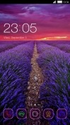 Nature CLauncher Alcatel 3V Theme