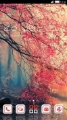 Autumn CLauncher Asus Zenfone V V520KL Theme