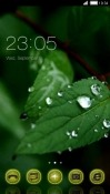 Green Leaf CLauncher LG Optimus F3Q Theme