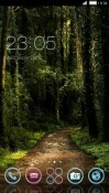 Forest CLauncher Sony Xperia 5 Theme