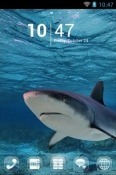 Shark Go Launcher Android Mobile Phone Theme
