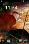 Autumn Go Launcher QMobile Noir W7 Theme