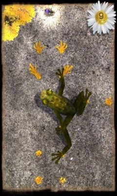 Ancient Frog Android Game Image 1