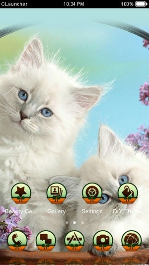 Cat CLauncher Android Theme Image 2
