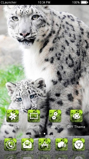 Snow Leopard CLauncher Android Theme Image 1