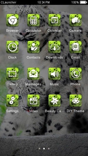 Snow Leopard CLauncher Android Theme Image 2