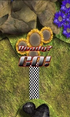Bugs Race Android Game Image 2