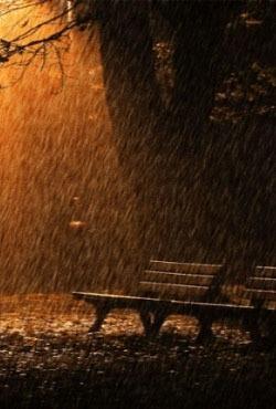 Rain Animated Android Wallpaper Image 1