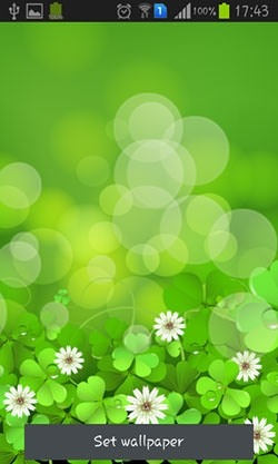 Download Free Android Wallpaper Lucky Clover - 3249 ...