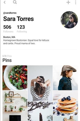 Pinterest Android Application Image 2