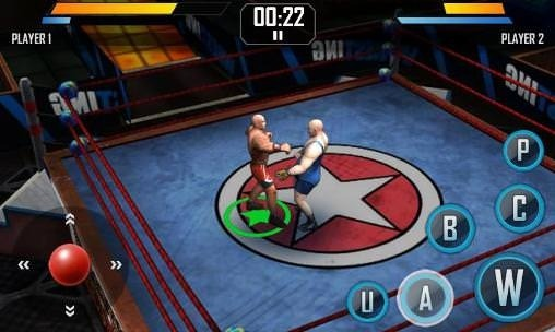 Real Wrestling 3D Android Game Image 1
