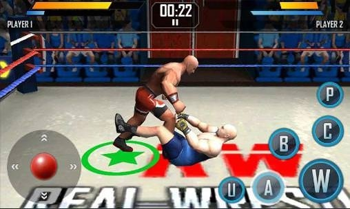Real Wrestling 3D Android Game Image 2