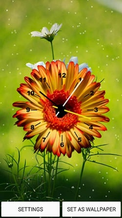 Flowers Clock Android Wallpaper Image 1