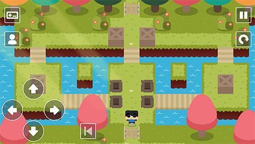 Sokoban Land DX Android Game Image 2