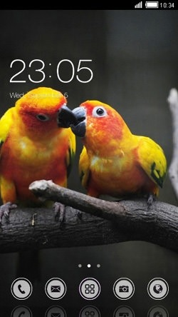 Love Birds CLauncher Android Mobile Phone Theme Image 1