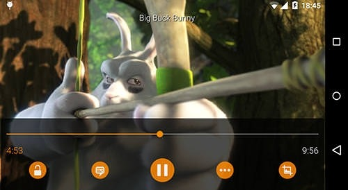 VLC Media Player Android Application Image 2