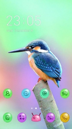 Humming Bird CLauncher Android Mobile Phone Theme Image 1