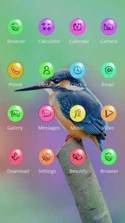 Humming Bird CLauncher Android Mobile Phone Theme Image 2