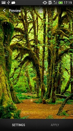 Forest Android Mobile Phone Wallpaper Image 1
