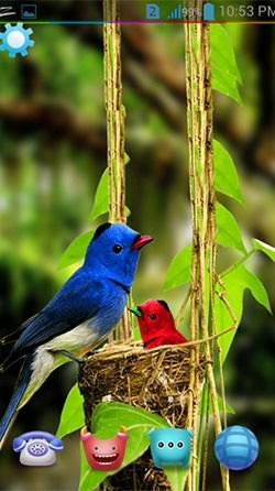 Birds 3D Android Wallpaper Image 1