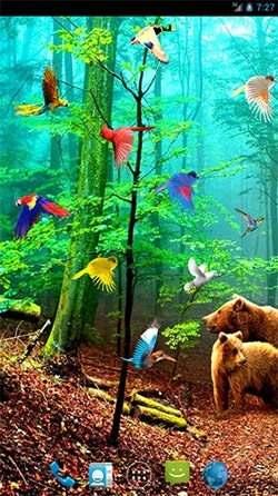 Forest Birds Android Wallpaper Image 1