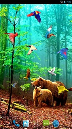 Forest Birds Android Wallpaper Image 2