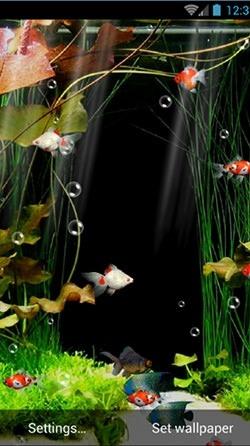 Aquarium Android Wallpaper Image 1