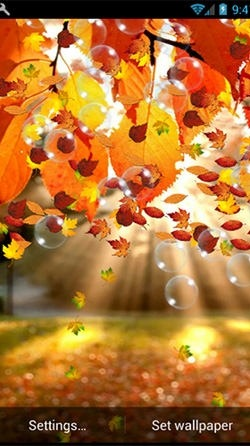 Autumn Android Wallpaper Image 3
