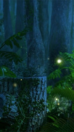 Fireflies Android Wallpaper Image 2