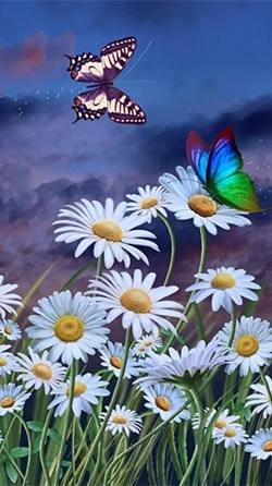 Summer: Flowers And Butterflies Android Wallpaper Image 1
