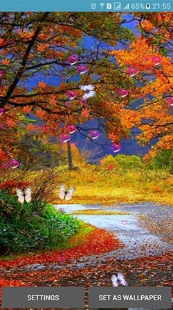 Autumn Android Wallpaper Image 4