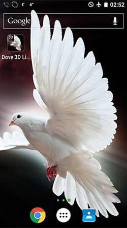 Dove 3D Android Wallpaper Image 1