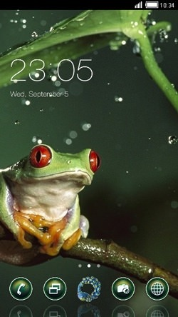 Frog CLauncher Android Theme Image 1