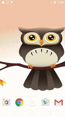 Cute Owl Android Wallpaper Image 1