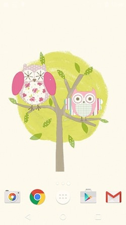 Cute Owl Android Wallpaper Image 3