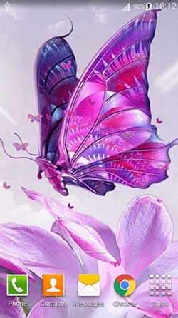 Pink Butterfly Android Wallpaper Image 2