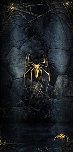 Spider Mobile Phone Wallpaper Image 1