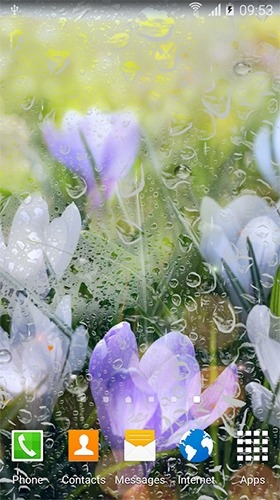 Rainy Flowers Android Wallpaper Image 2