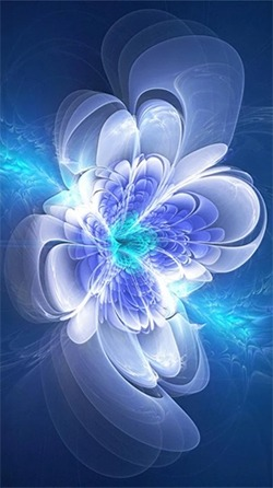 Shining Flowers Android Wallpaper Image 2