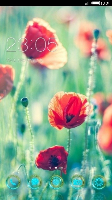 Red Flowers CLauncher Android Theme Image 1