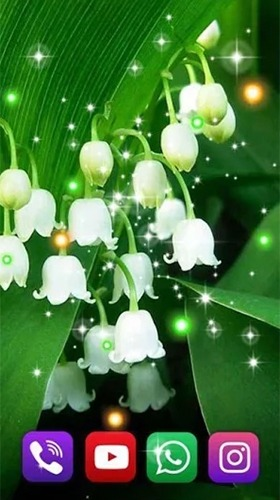 Forest Lilies Android Wallpaper Image 2