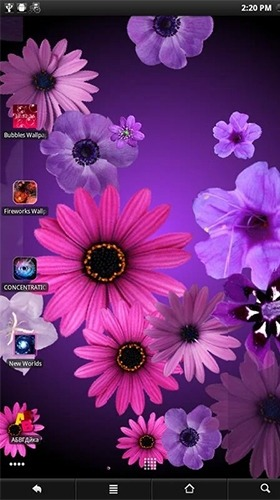 Flowers Android Wallpaper Image 1