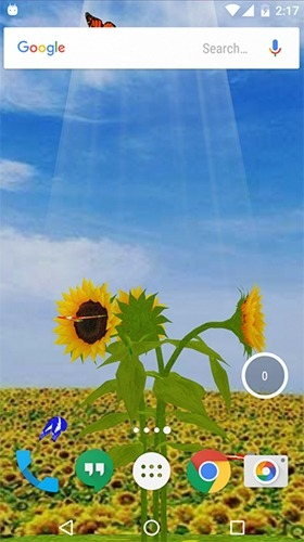 Sunflower 3D Android Wallpaper Image 2