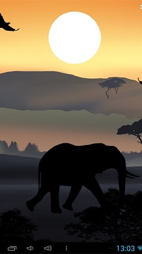 African Sunset Android Wallpaper Image 4