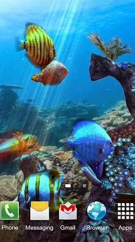 Clownfish Aquarium 3D Android Wallpaper Image 3