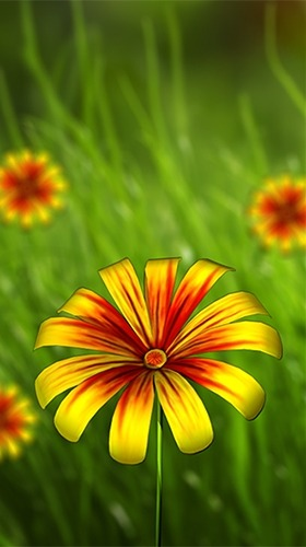 Flower 360 3D Android Wallpaper Image 3