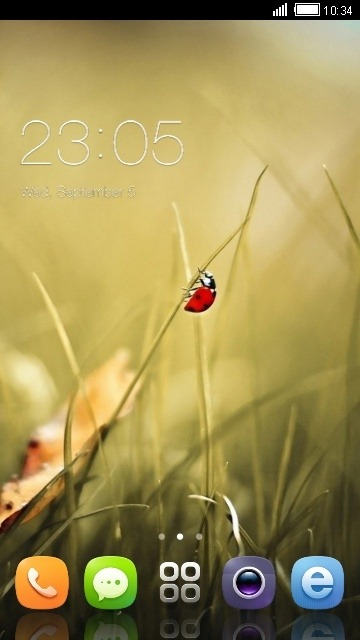 Ladybug CLauncher Android Theme Image 1